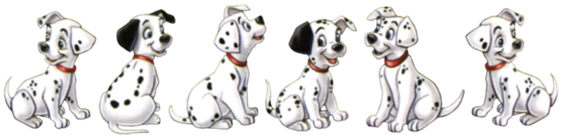 BON JEUDI Dalmation-Puppies_molly