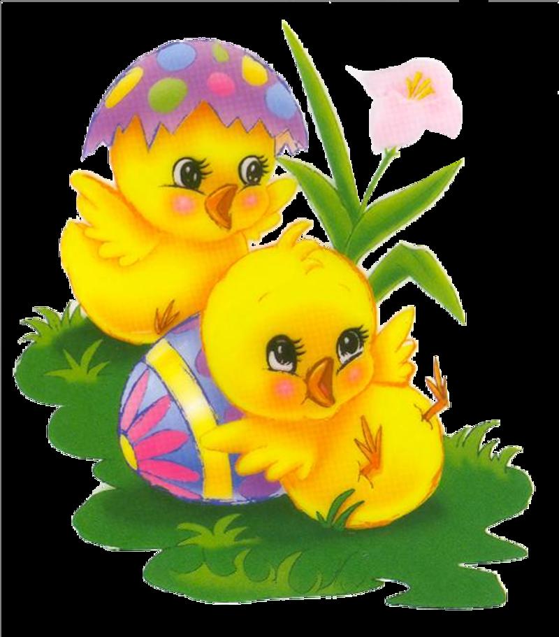 Paques poules poussins - Poules de paques ...